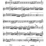 OBS. Scores. 002. Avison-Scarlatti Concerto V en Re m. PARTS
