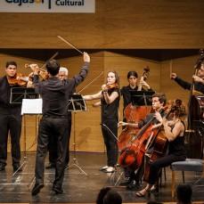 2014-06-20. Joven Orquesta Barroca de Sevilla. Director: Valentín Sánchez. Fotos: José Luis Pérez Aquino
